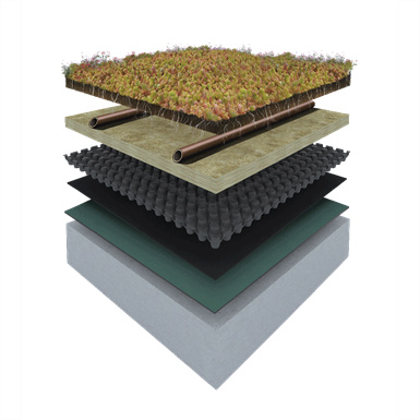 www.dachholding.com izolacja dachu zielonego